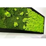 Mechový obraz z plochého a sobího mechu 150*50cm - dřevěný rám černý