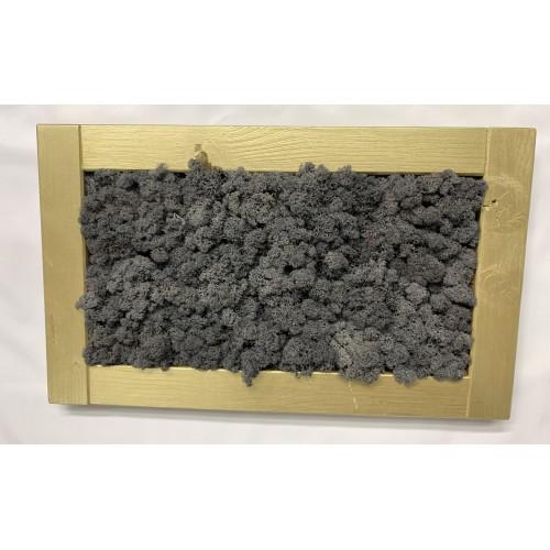 Mechový obraz 49*30*3 - sobí mech  - dřevěný rám zlatý