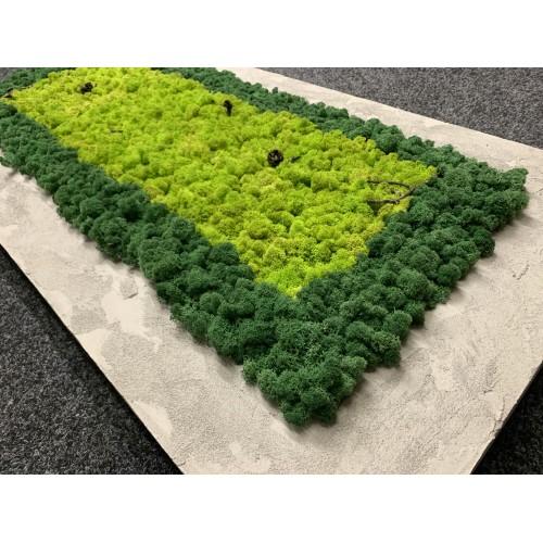 Mechový obraz 124*60*6 - sobí  mech - podklad imitace betonu