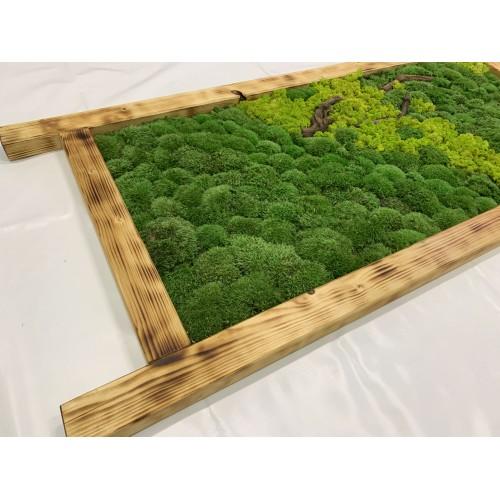 Mechový obraz 148*63*4 - sobí a kopečkový mech  - dřevěný rám opálený