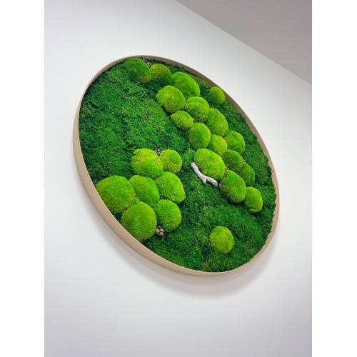 Mechový obraz v dřevěném kulatém rámu s dřevinou- volba velikosti 30-100cm