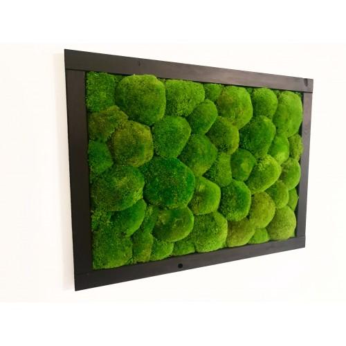 Mechový obraz v dřevěném černém rámu 70x40cm - možnost vlastní velikosti