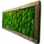 Mechový obraz v dřevěném postařeném rámu - více variant
