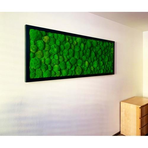 Mechový obraz v dřevěném kvalitním černém rámu - několik rozměrů