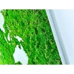 Mechový obraz mapy světa 200x100cm - tenký hliníkový rám dle vlastní barvy